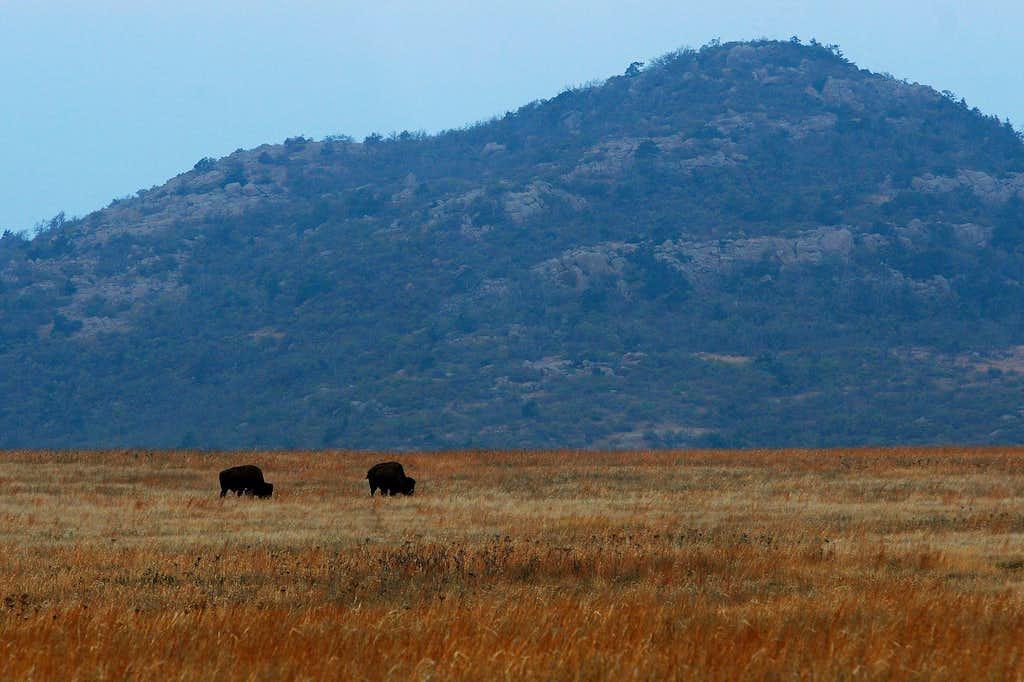 Central Peak, Wichita Mountains Wildlife Refuge