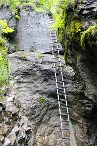 Another long ladder