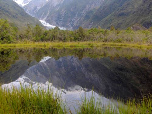 Little pond near Franz Jozef Glacier
