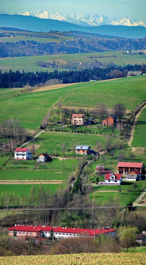 From Carpathian Foothills