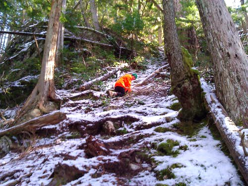 ChoirBoy climber's trail
