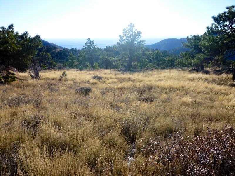 Bush Mountain Slopes