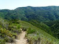 Coon Creek Canyon