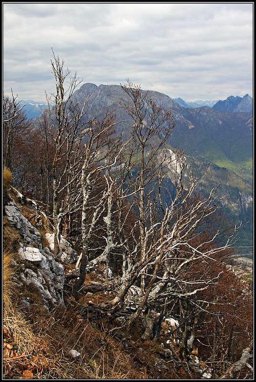 On Monte San Simeone
