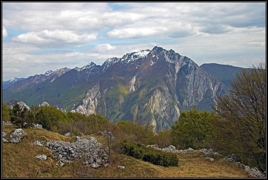 Monte Chiampon from the NW