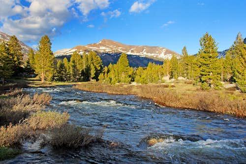 Mount Gibbs from Dana Fork
