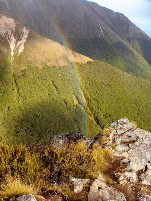 Rainbow over Fiordland