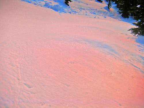Alpenglow on the Snow