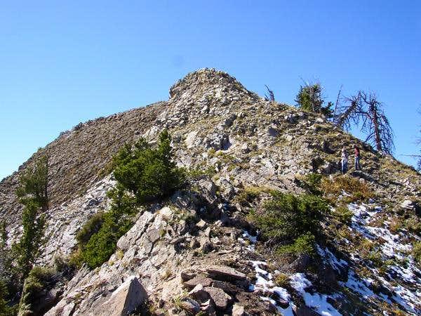 Nearing the summit of Mt....