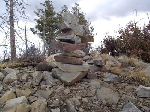 Kellogg Mountain summit cairn