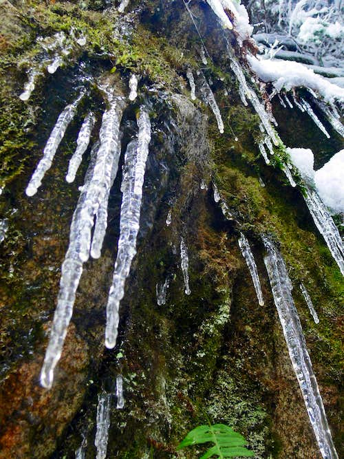 Icicles Hanging Down