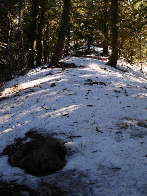 Natapoc Mountain - Summit Ridge