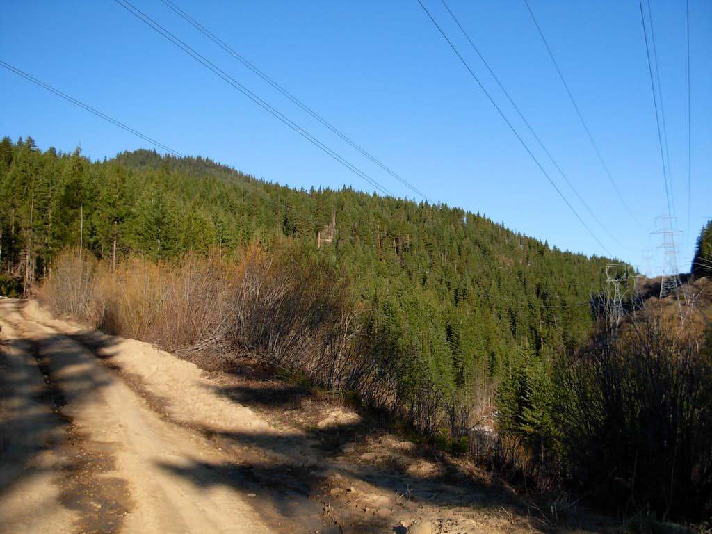 Natapoc Mountain - Road 810