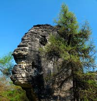 "The ""Head of Janus"" in the Tisá walls"