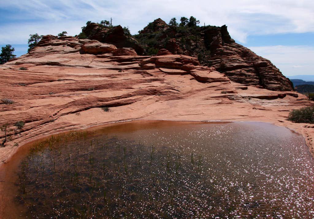 Pool on Cave Knoll