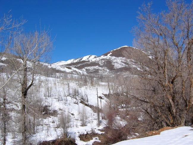 Lookout Peak as seen from...