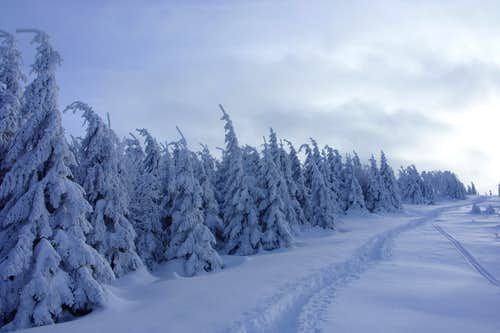 Brocken winter landscape