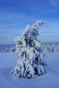 Brocken winter landscape