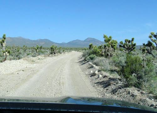 The road to Badger Springs