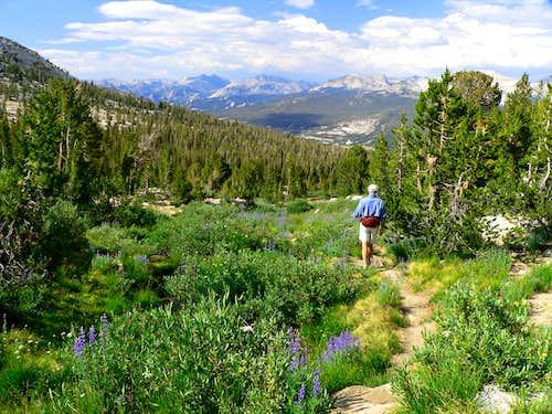 Budd Lake Trail