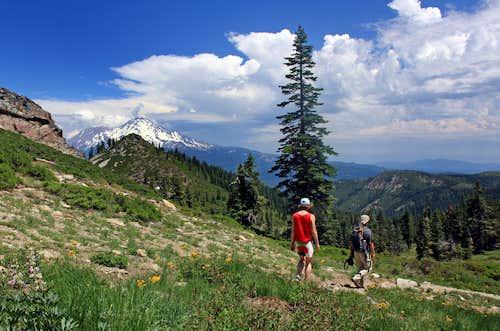 Heart Lake Trail