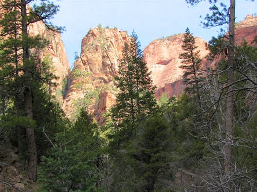 On Kolob Arch Trail