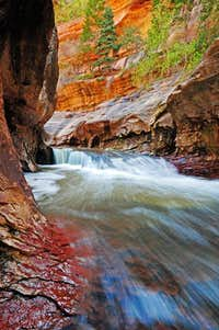Zion NP - The Subway (Spring run-off May 2011)