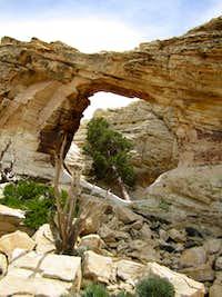 Bridge's Arch