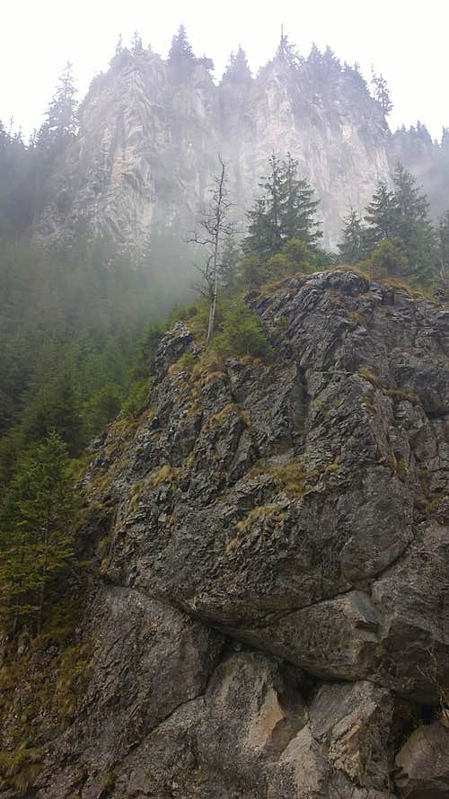 Siwiańskie Turnie in Chocholowska Valley.
