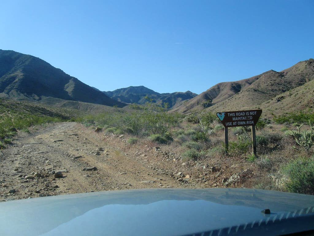 Heading up Elbow Canyon    (3)