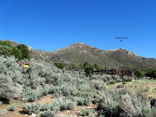 Cougar Springs  (5)