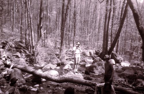 Typical Stream Scene Near AT in 1966