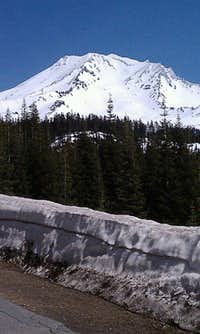 Shasta From Highway