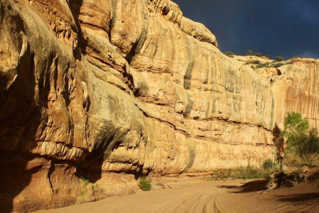 Lavender Canyon