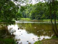 20100801 1308a river