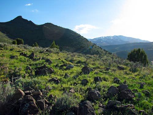 Step Mountain & Butterfield Peak