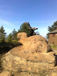 Turtle and Parrot (or Dinosaur) on Töpfer, Zittau mountains