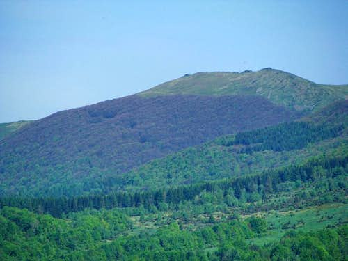 Hnatowe Berdo in Połonina Wetlińska ridge