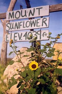 KS - Mount Sunflower