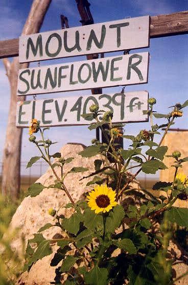 Mount Sunflower