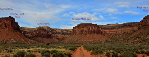 Meat Walls Overview