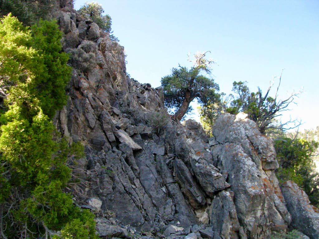 1st of many rocky areas