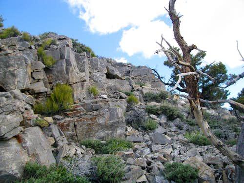 Upper reaches of South Ridge