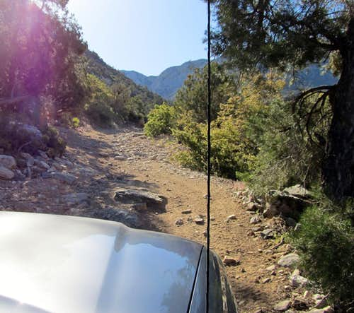 Up Elbow Canyon