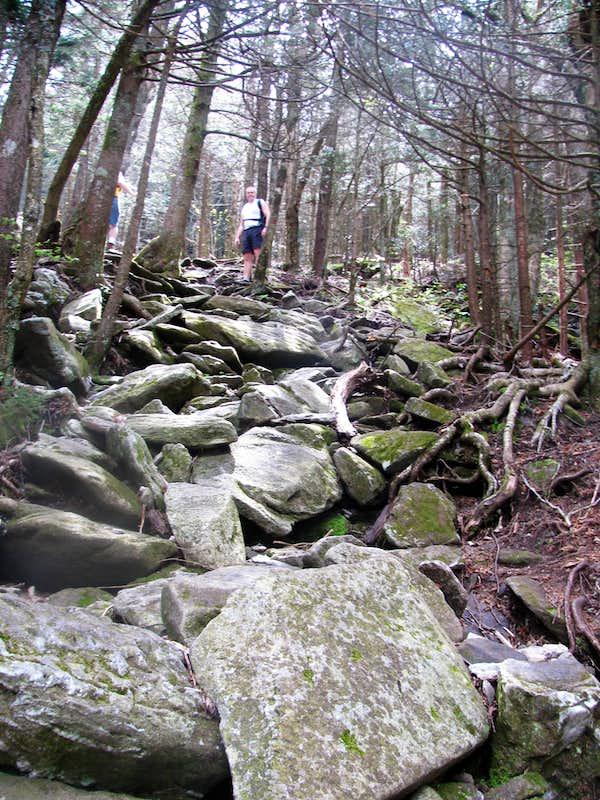 A Rugged Trail