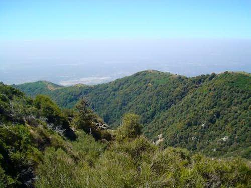 Jones Peak Ridgeline from Mt. Wilson Toll Road