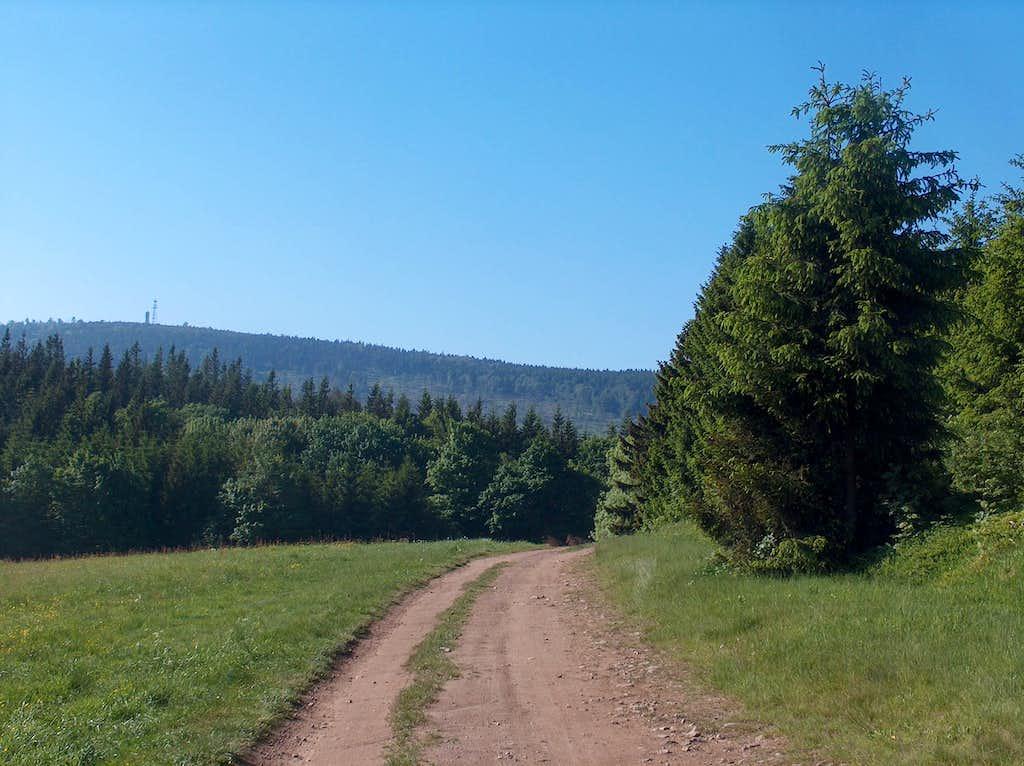 Open views near Przełęcz Walimska