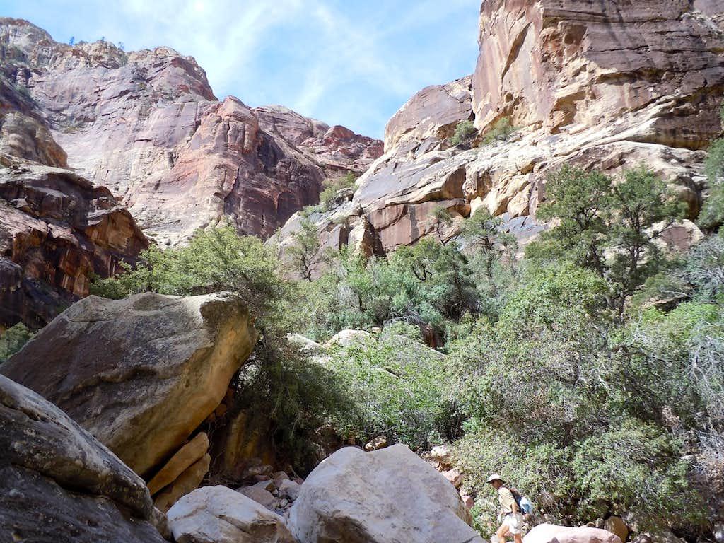 Approaching Terrace Canyon