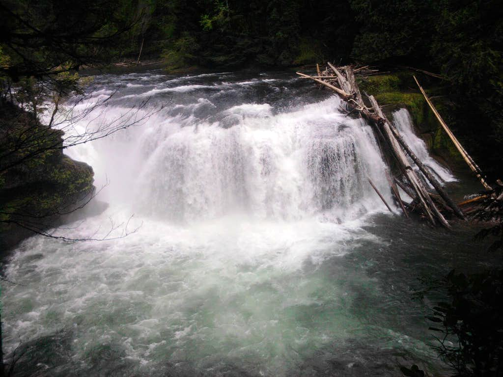 Lower Falls: Lews River - Gifford Pinchot National Forest