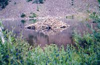 Beaver Lodge at Maroon Lake